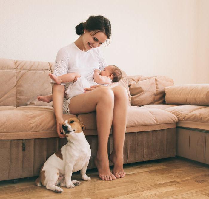 cachorro e criança (1)